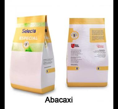 Base para Sorvete Selecta Especial Sabor Abacaxi 1 Kg