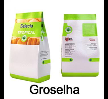 Selecta Tropical Groselha Duas Rodas 1 Kg