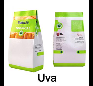 Selecta Tropical Uva Duas Rodas 1 Kg
